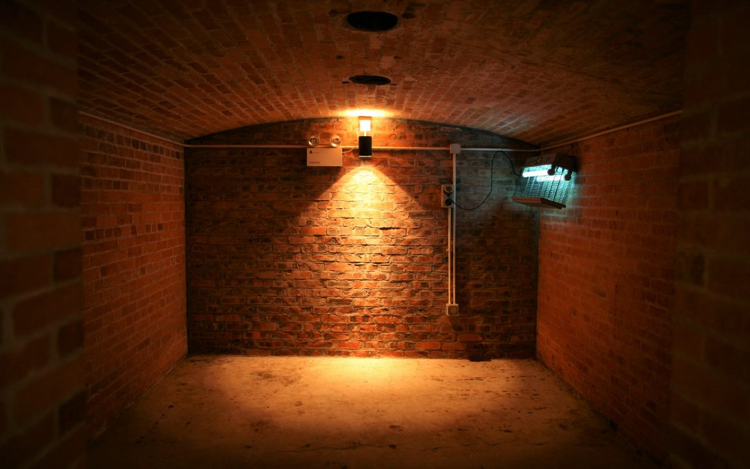 Tips for Waterproofing a Basement or Crawl Space