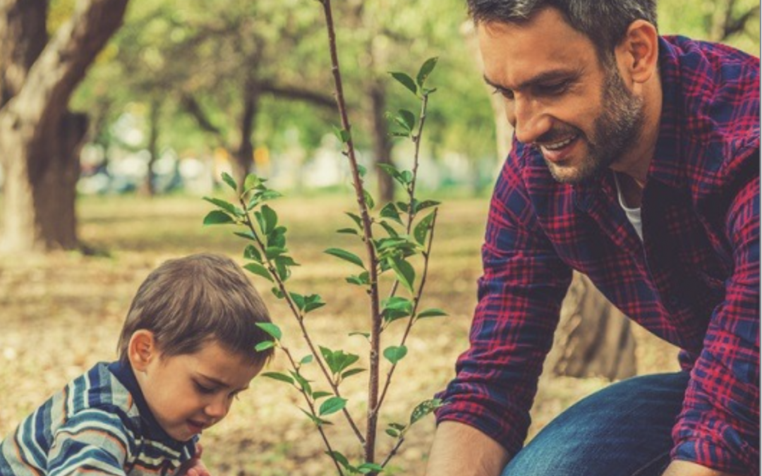 18 Eco-Friendly Father's Day Gift Ideas