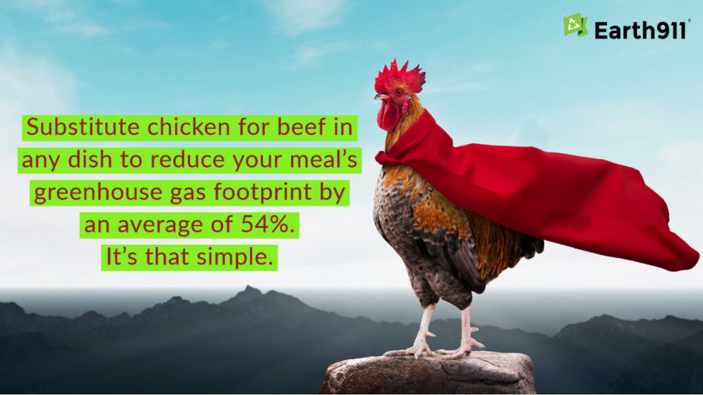 We Earthlings: Substitute Chicken for Beef