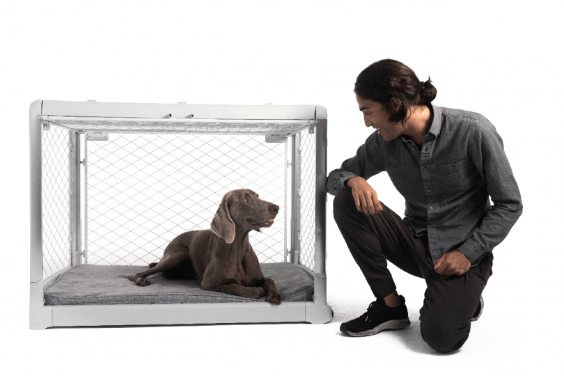 Meet Revol: The Dog Crate That Combines Form + Function